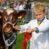 County Show